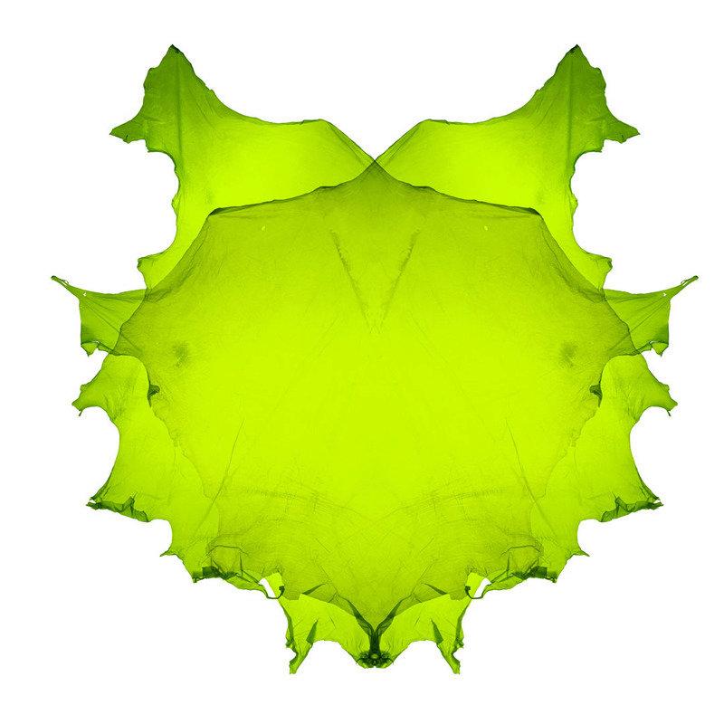 APPARITION - Skin Acid Green.jpg