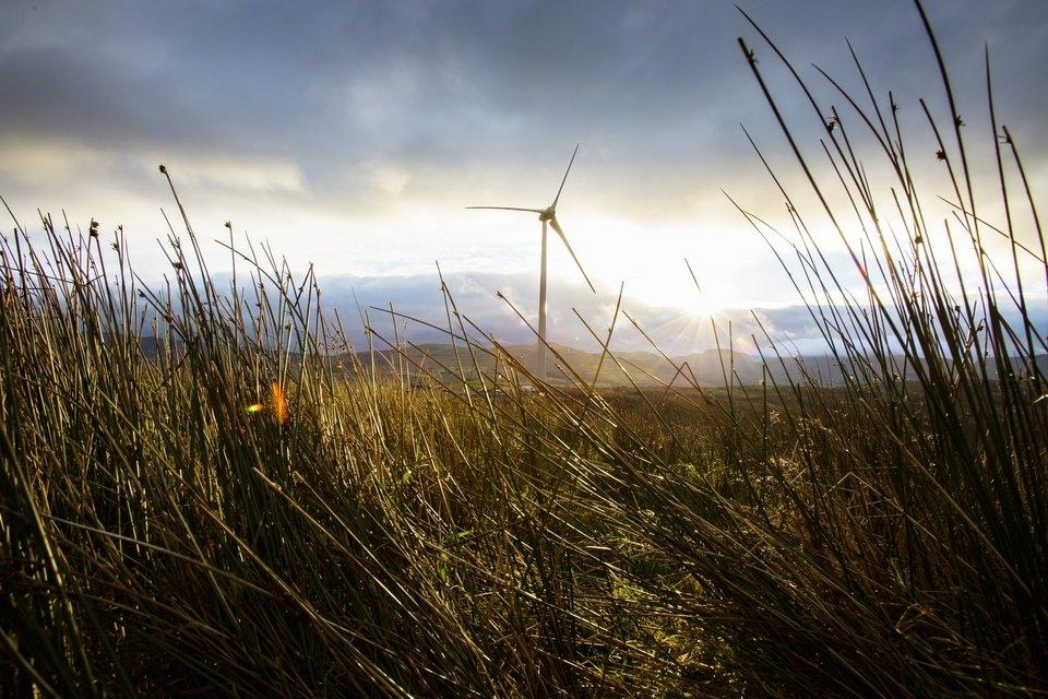 zdjecie farm wiatrowych.jpg