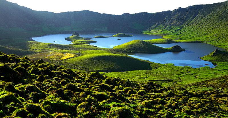 Dzikie wyspy Europy.jpg