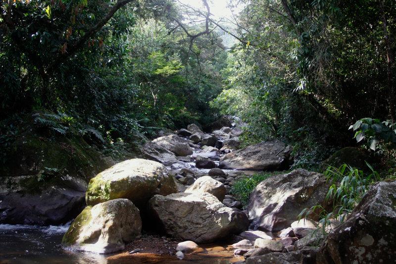 Dzika Kolumbia_raj na ziemi.jpg