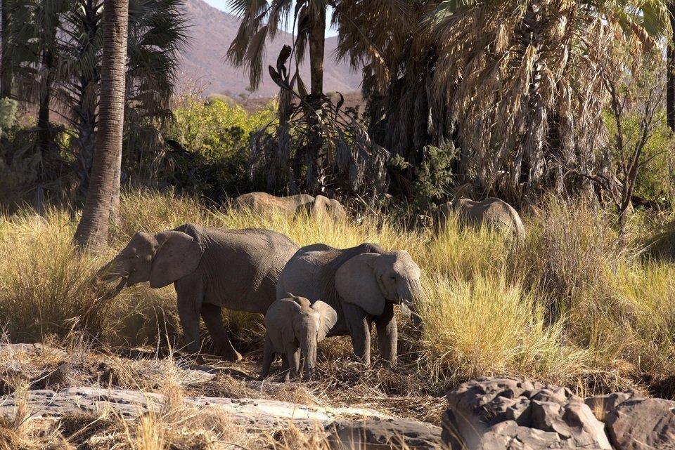 Namibia_01 (2).jpg