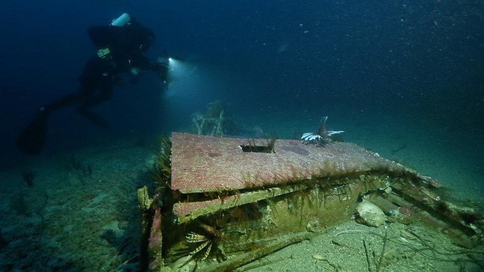 Wyprawa na dni- skarby oceanów (106).jpg