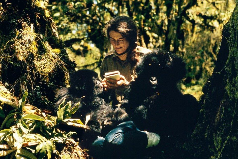 Kto zabił Dian Fossey_małe.jpg