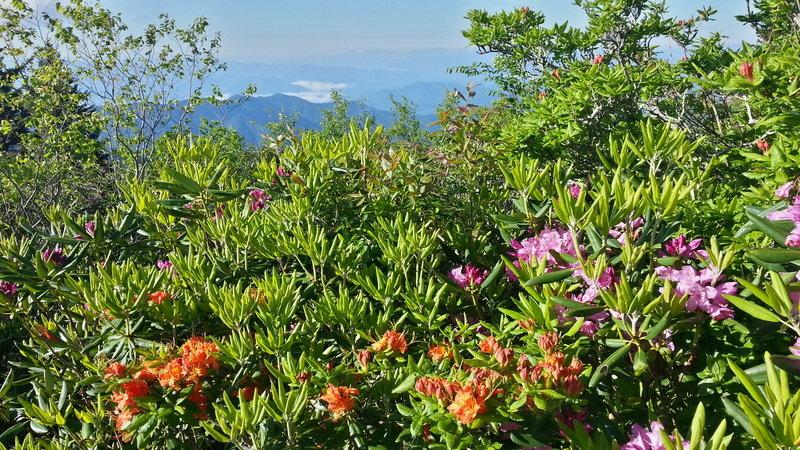 Najpiękniejsze parki narodowe USA 10.JPG