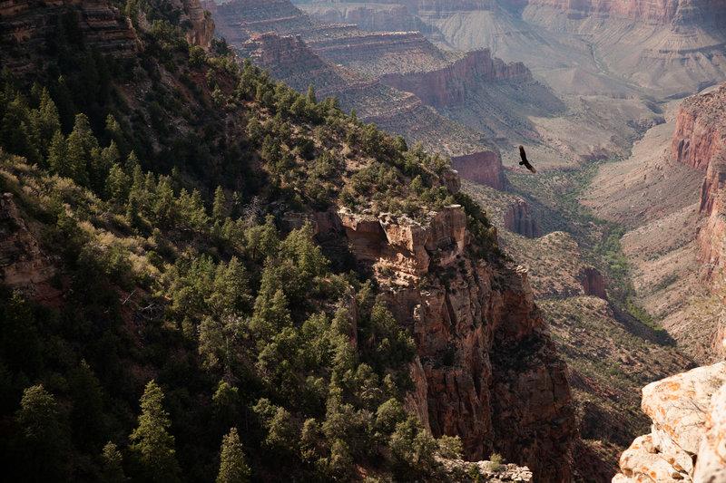Najpiękniejsze parki narodowe USA 8.JPG