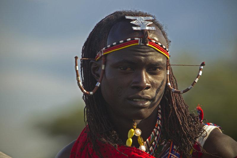 Lwy kontra Masajowie 1.jpg