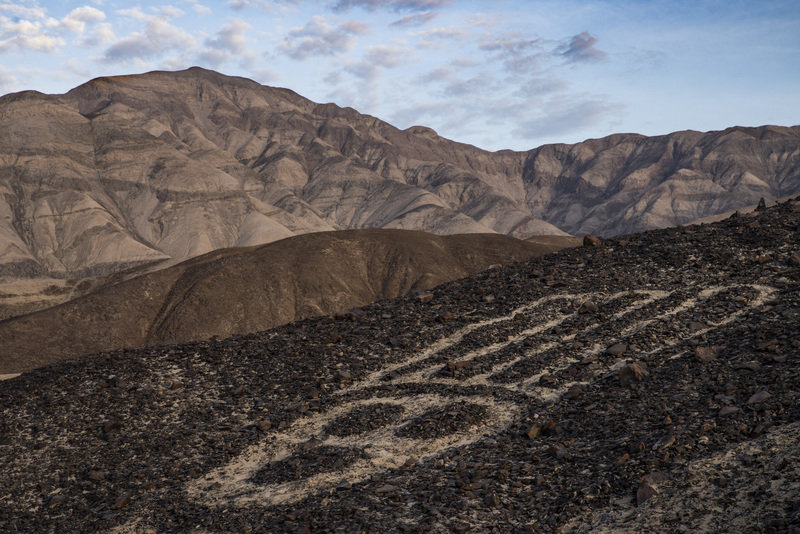 Rysunki z Nazca 3.jpg