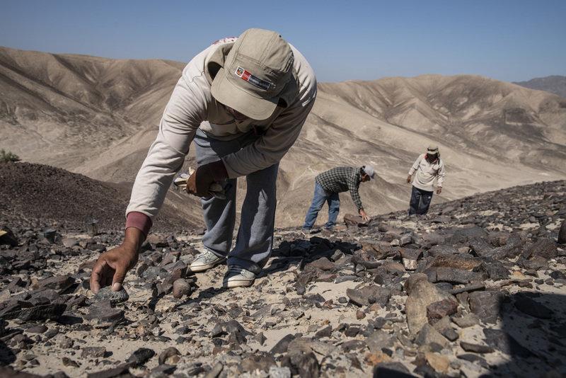 Rysunki z Nazca 2.jpg