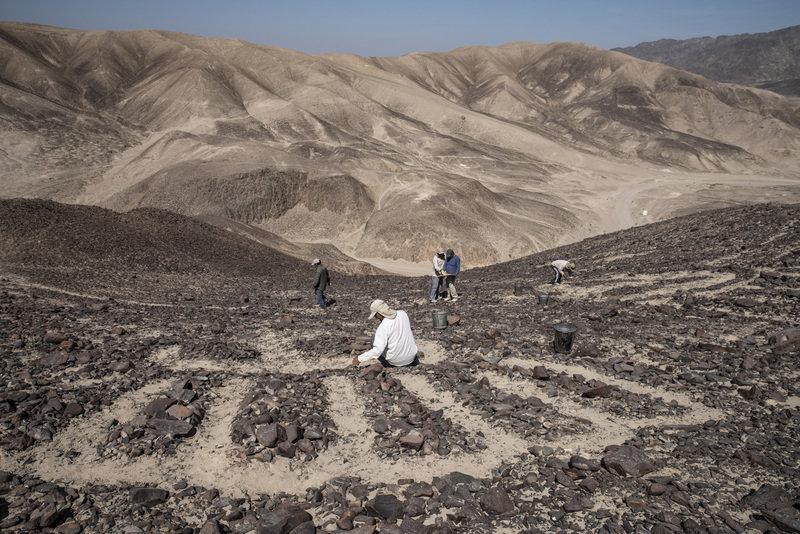 Rysunki z Nazca.jpg