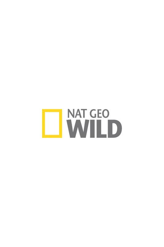 Nat_Geo_Wild.jpg