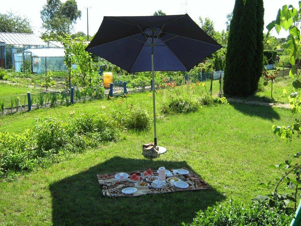 picnic-322665_1920.jpg