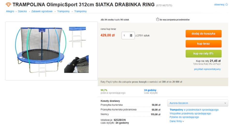 tRAMPOLINA OlimpicSport 312cm SIATKA DRABINKA RING.PNG