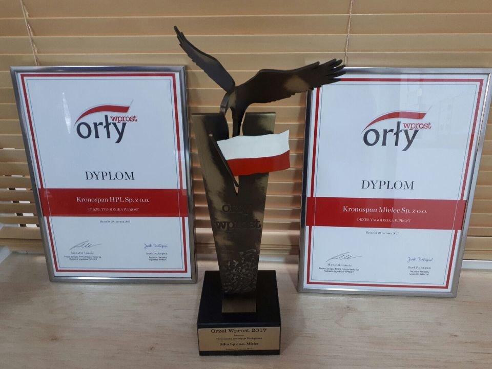 Statuetka i wyróżnienia przyznane spółkom Kronospan w 2017 roku w plebiscycie
