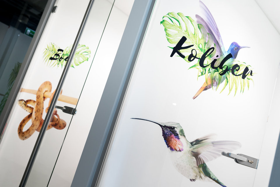 Ingenious branding and wayfinding with tropical animals