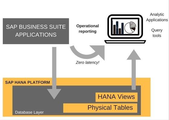 SAP ERP HANA LIVE.jpg