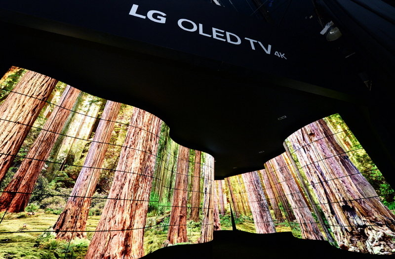 LG OLED Canyon_2.jpg
