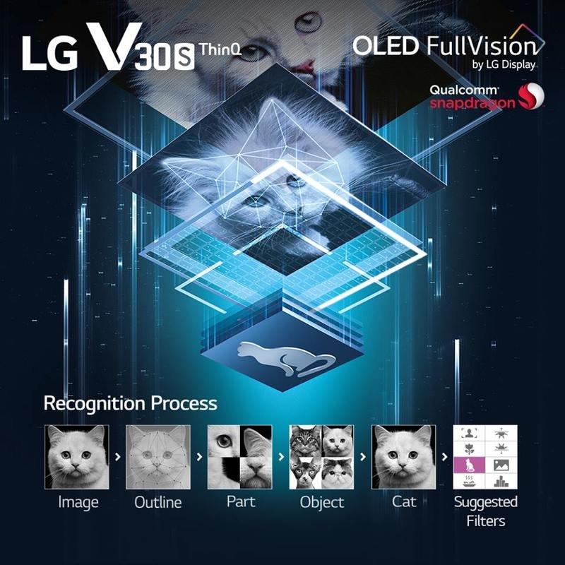 LG (1).jpg