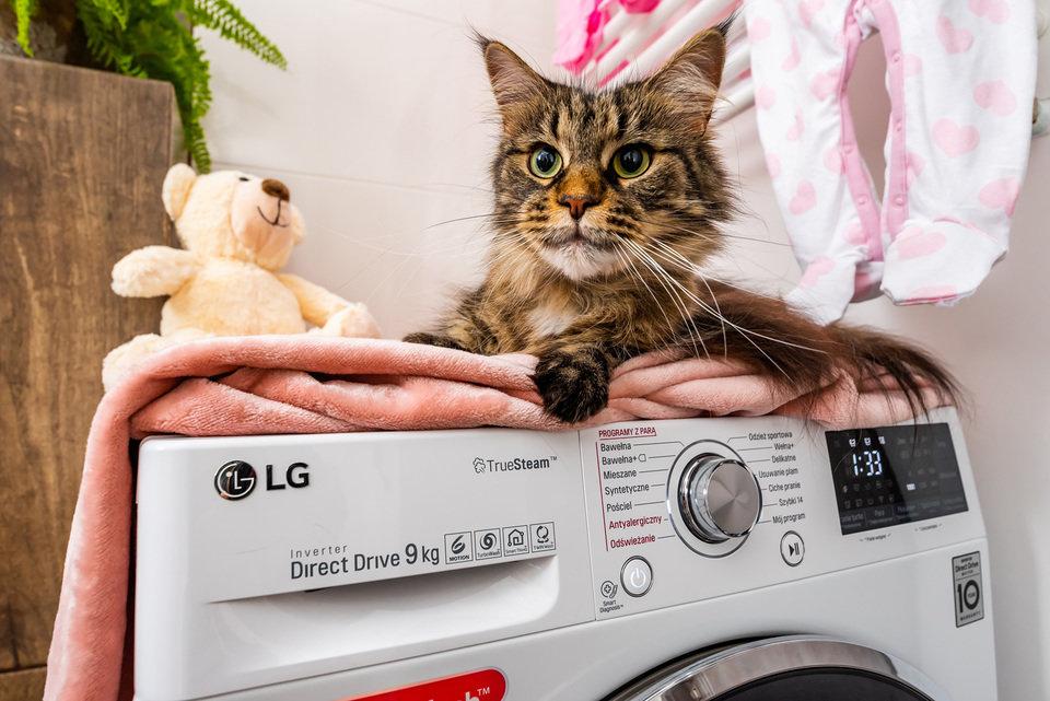 Dzięki praniu w parze likwidowanych jest 99,9% alergenów
