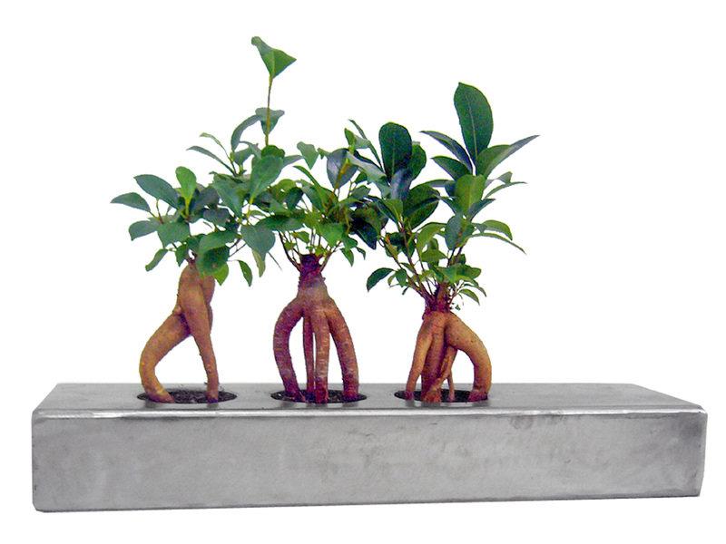 07_Tubes_vegetalises_Design-Vegetal_sur_DaWanda_com.jpg