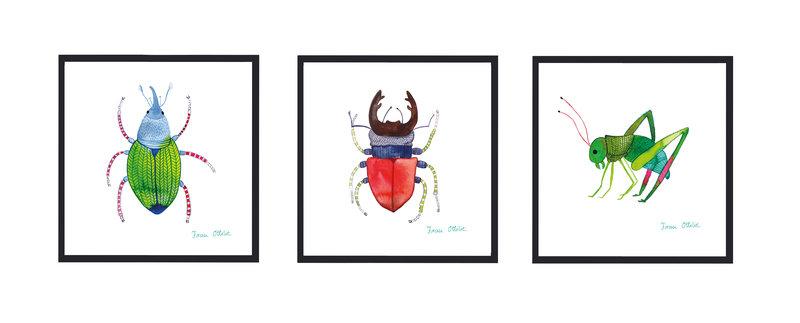 07_Affiches_insectes_Frau-Ottilie_sur_DaWanda_com.jpg