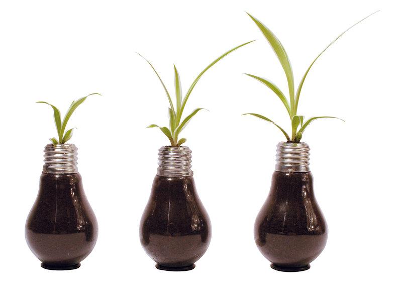 15_Pot_a_plante_ampoule_upcycling_bluehbirnen_de_sur_DaWanda_com.jpg