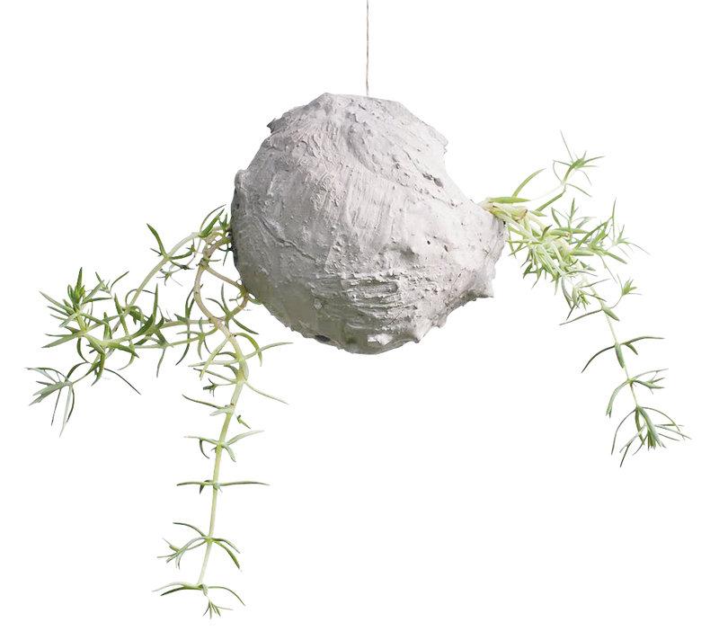 08_Pot_a_succulente_suspendu_La-Luz-Del-Bosque_sur_DaWanda_com.jpg