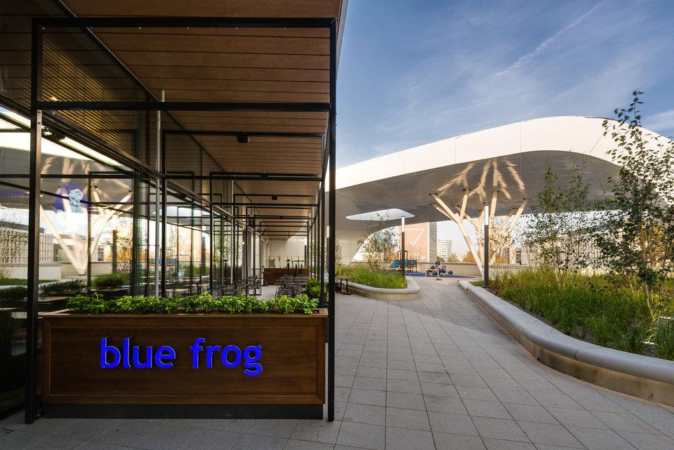 Restauracja Blue Frog w CH Wroclavia