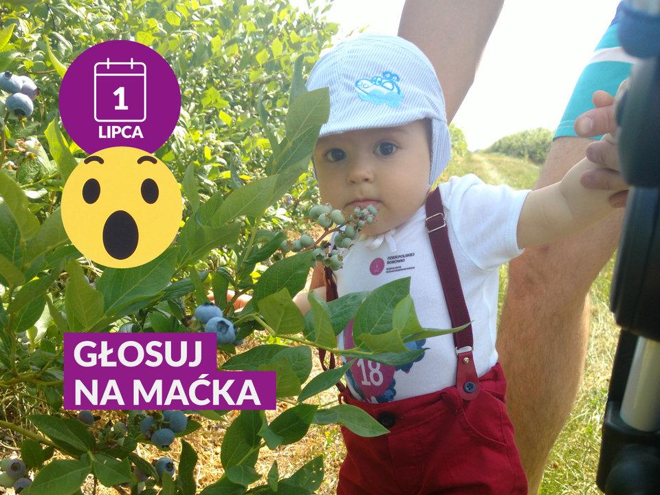 MACIEJ CHROMIŃSKI na Dzień Polskiej Borówki.jpg