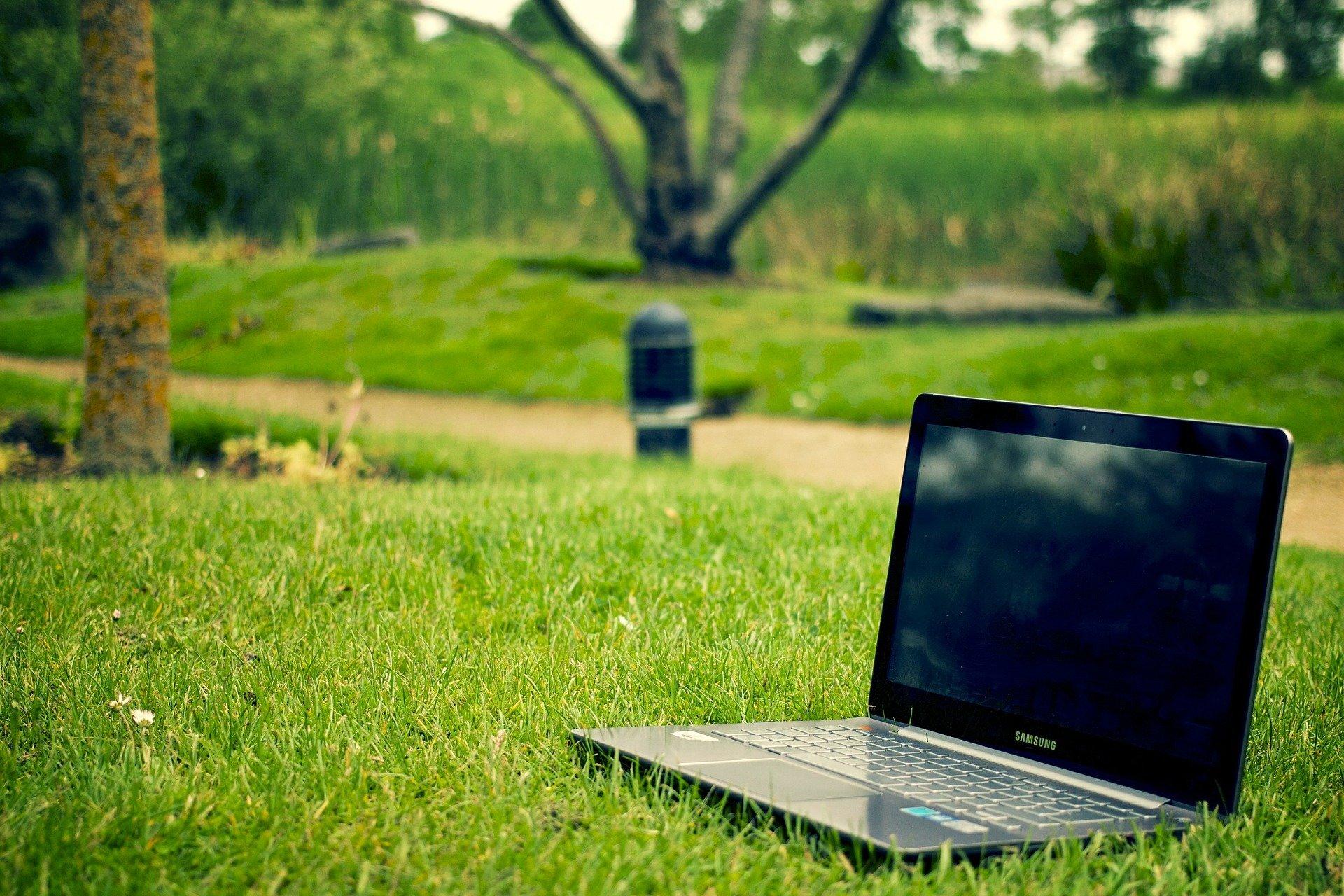 Dobra Nauka: Badania zieleni miejskiej