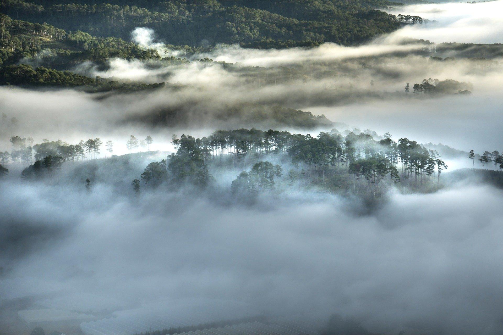 Polski rezerwat przyrody ze stacją badawczą w Kolumbii – zbyt piękne, aby mogło być prawdziwe?
