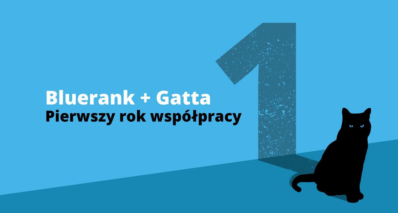 Bluerank ubiera markę Gatta w internety