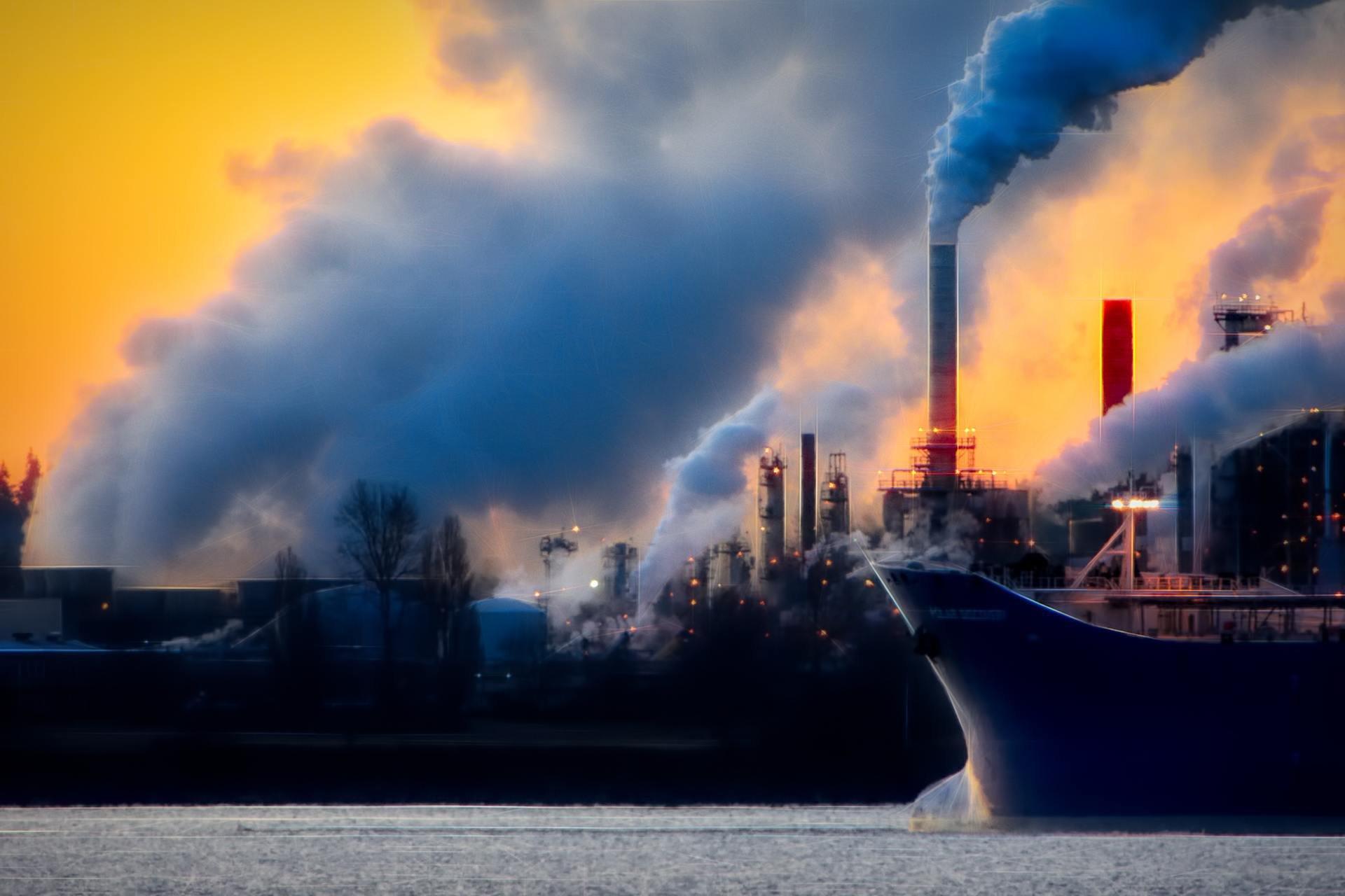 Smog biznes