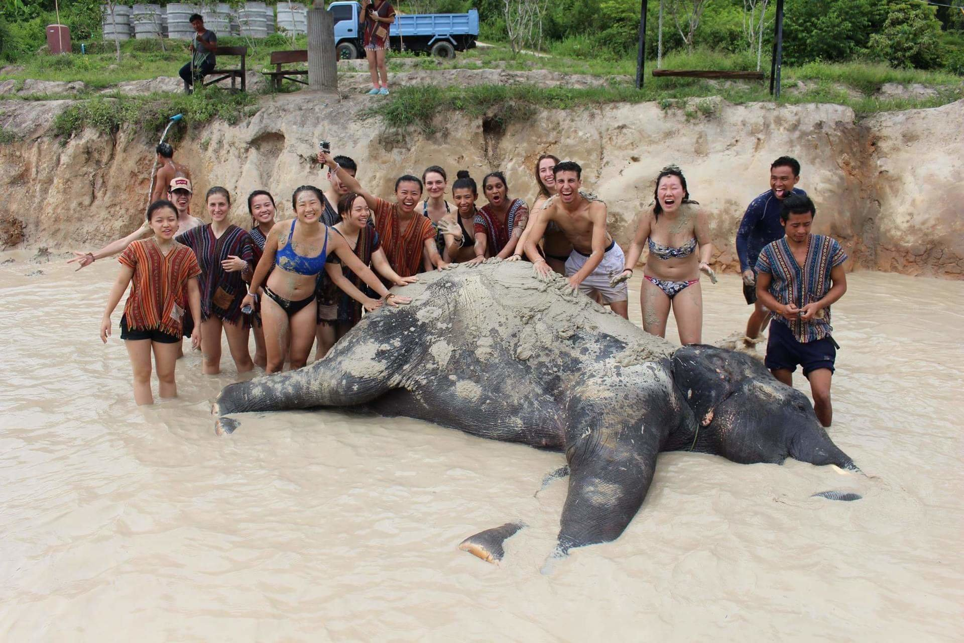 Czy też widzisz martwego słonia na tym zdjęciu?
