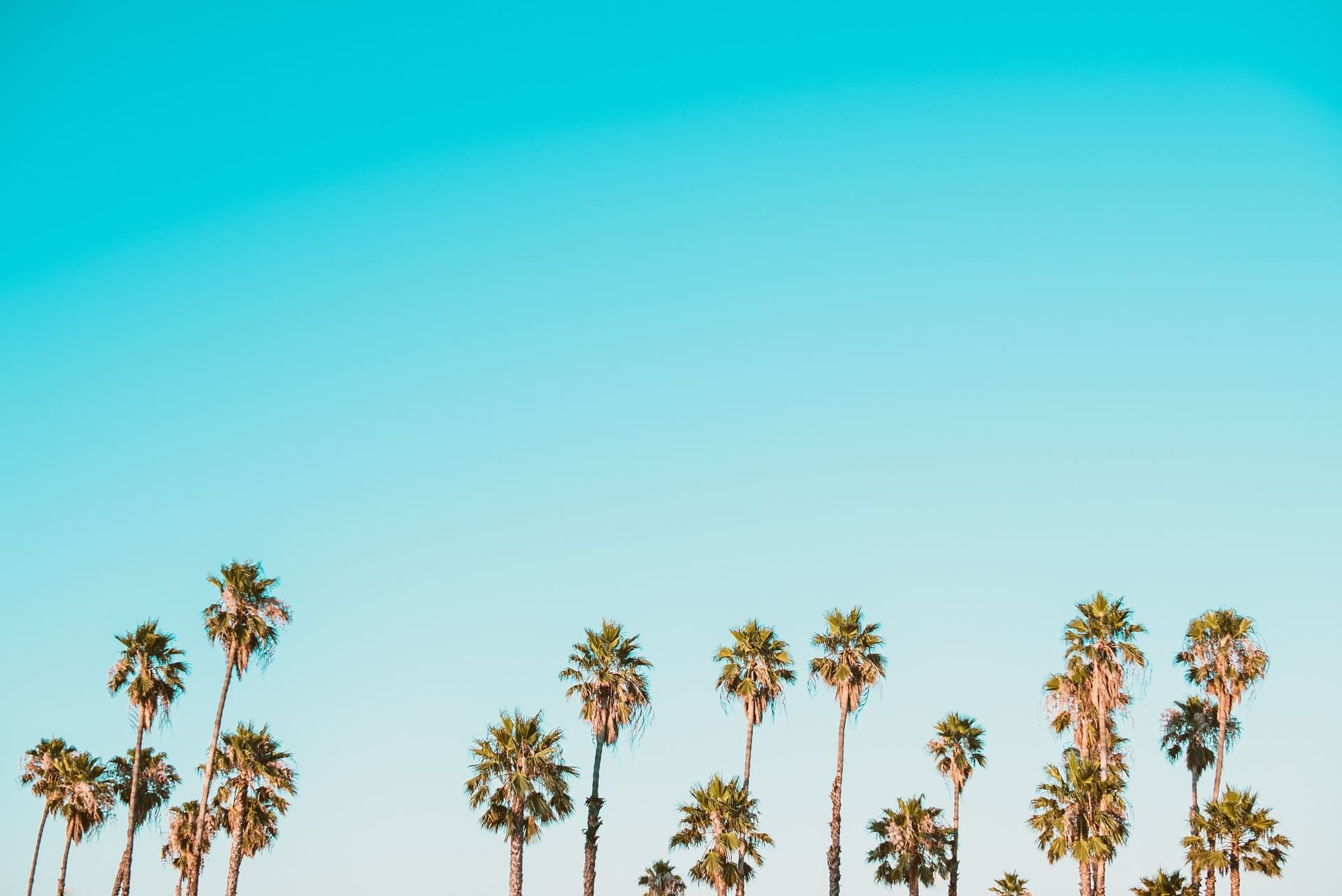 Spotify podsumowuje lato 2018