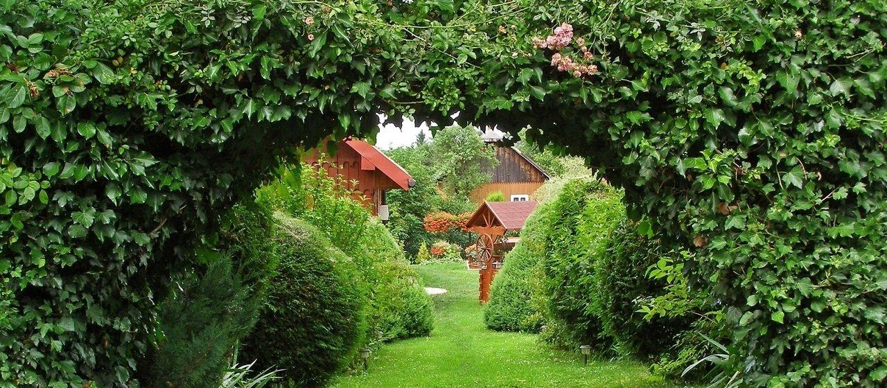 We własnym ogrodzie