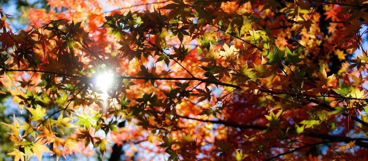 To już jesień!
