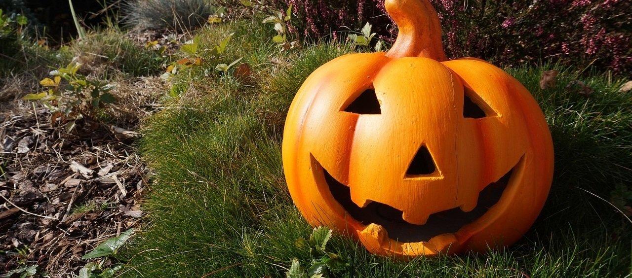 Halloween. Ignorujesz czy celebrujesz?